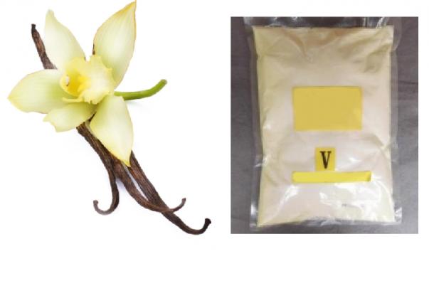 Vanilla processing line