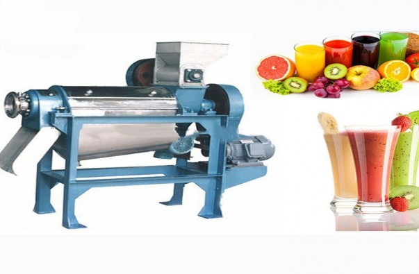 Automatic juicer machine for Small Business